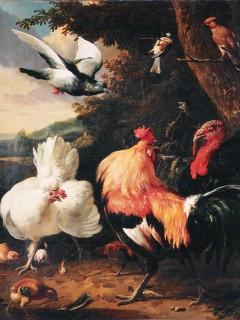 Aves de corral (Melchior de Hondecoeter)
